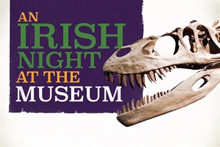 An Irish Night at the Museum